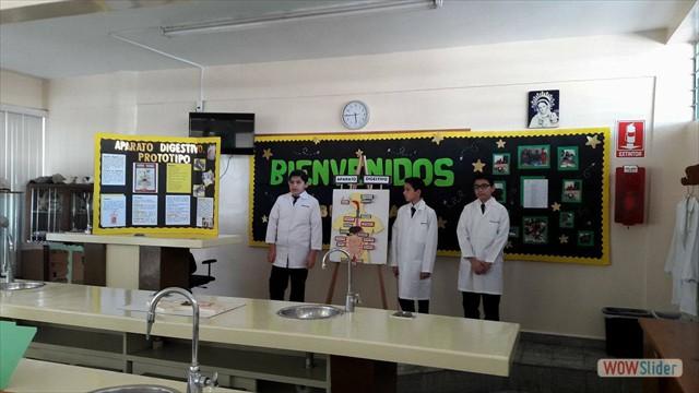 Biologia(136)