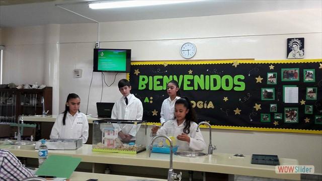 Biologia(147)
