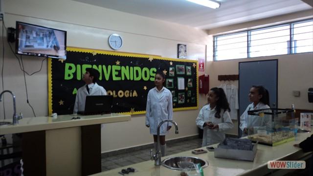 Biologia(183)
